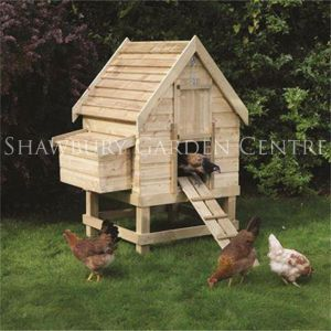 Picture of Small Chicken Coop