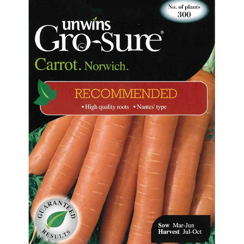 Picture of Unwins Gro-Sure® Norwich Carrot Seeds