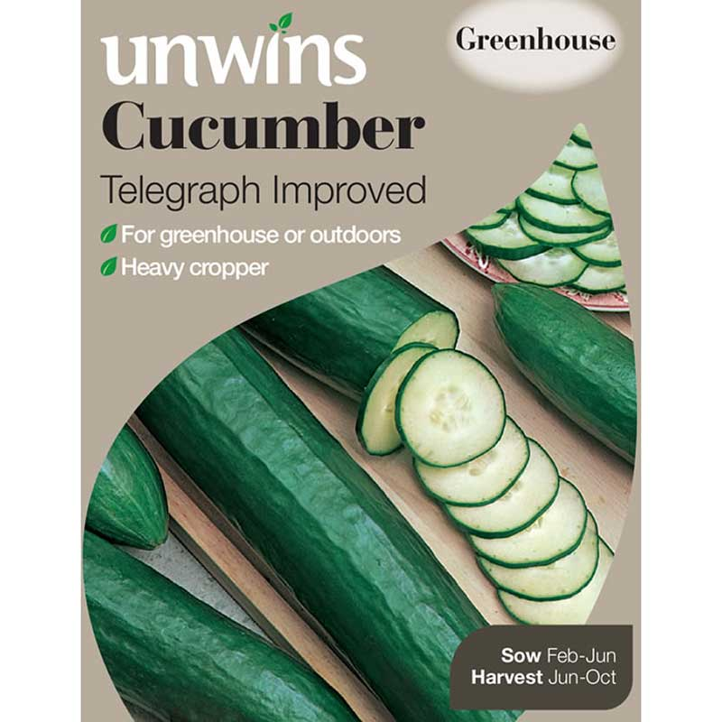 Picture of 'Telegraph' Cucumber Seeds