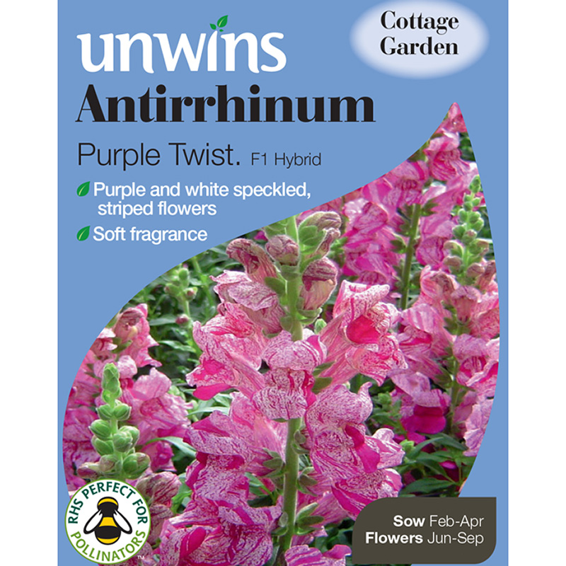 Picture of Unwins Antirrhinum Purple Twist Seeds