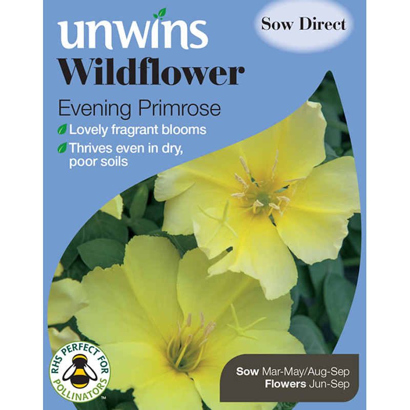 Picture of Unwins Evening Primrose 'Classic Yellow' Seeds