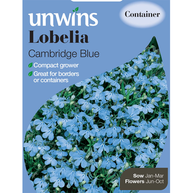 Picture of Unwins Lobelia 'Cambridge Blue' Seeds