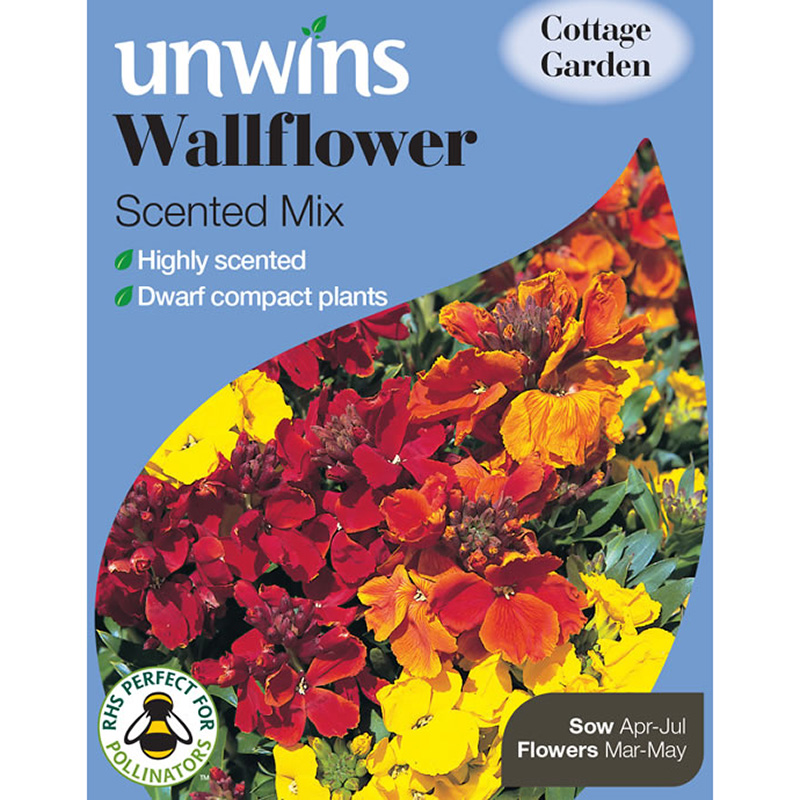 Picture of Unwins 'Scented Mix' Wallflower Seeds