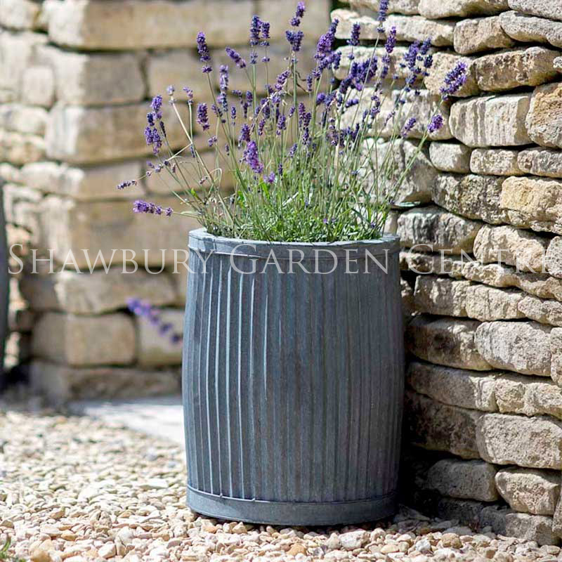 Picture of Garden Trading Vence Planter