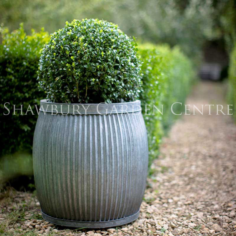 Picture of vence planter large for Garden planters