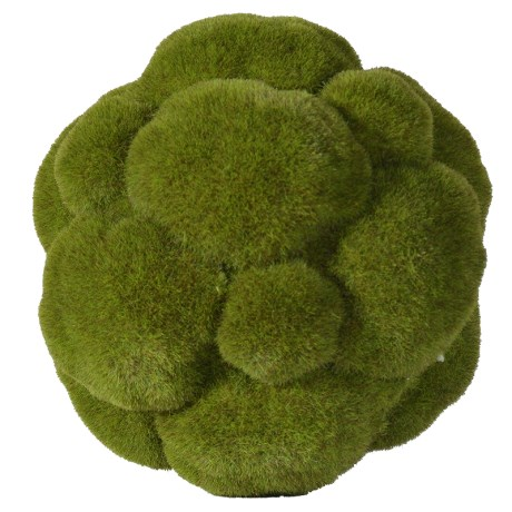 Picture of Small Moss Ball