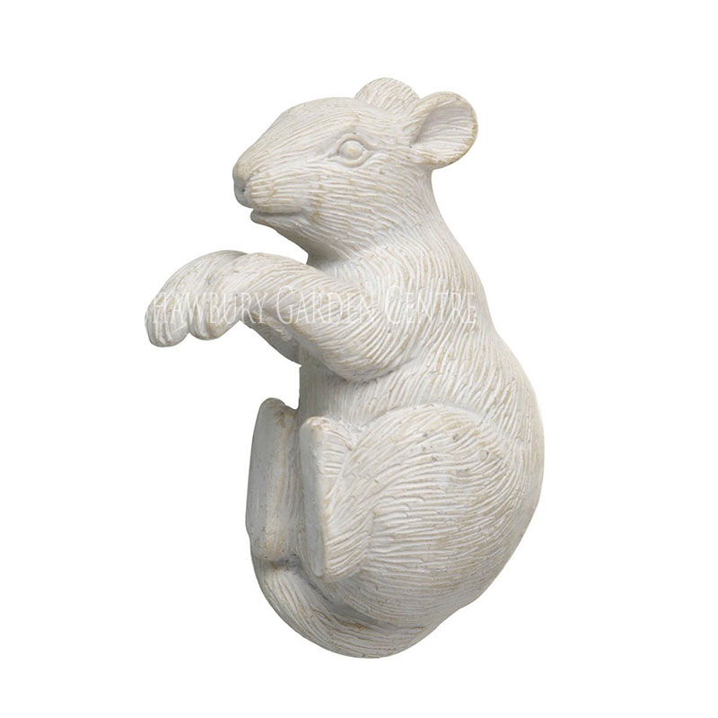 Picture of Pothanger Mouse