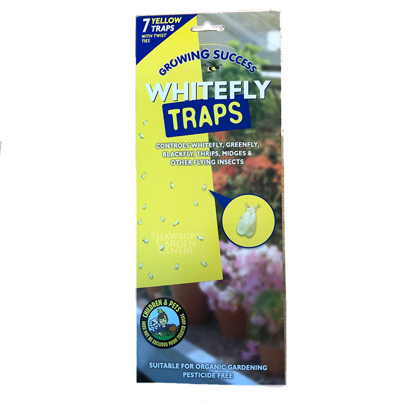 Picture of Growing Success Whitefly Traps