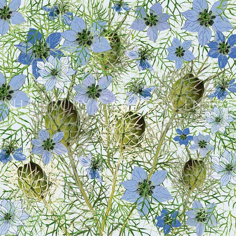 Picture of Green Pebble 'Love In A Mist' Card by Mig Wyeth