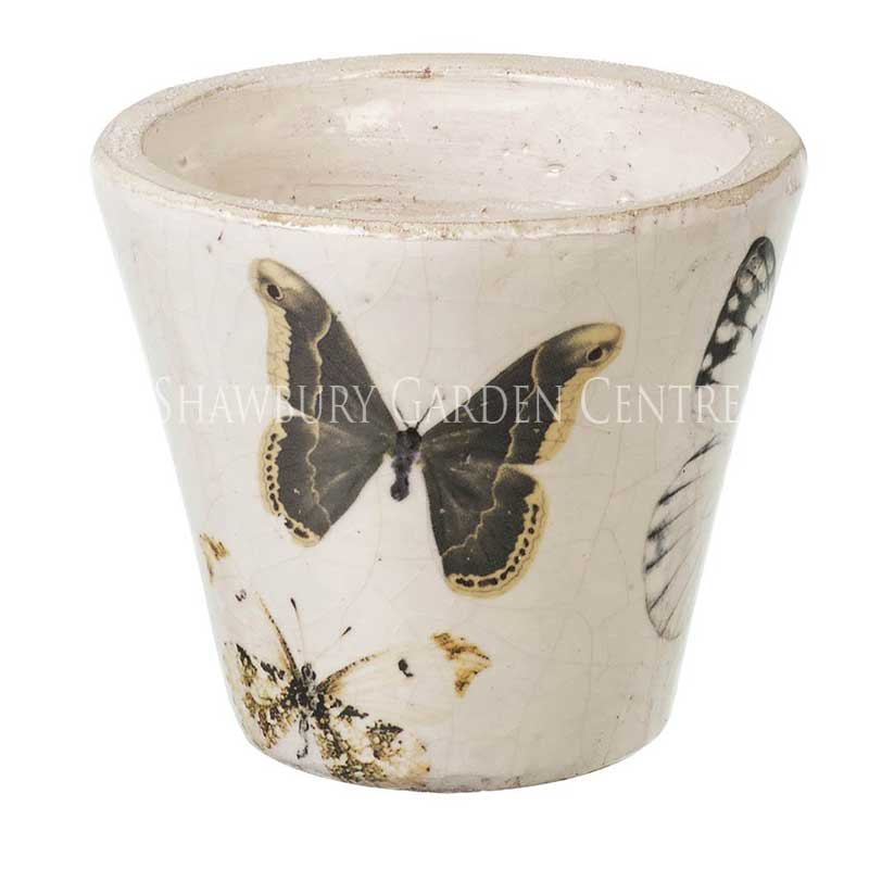 Picture of Parlane Butterfly Pot