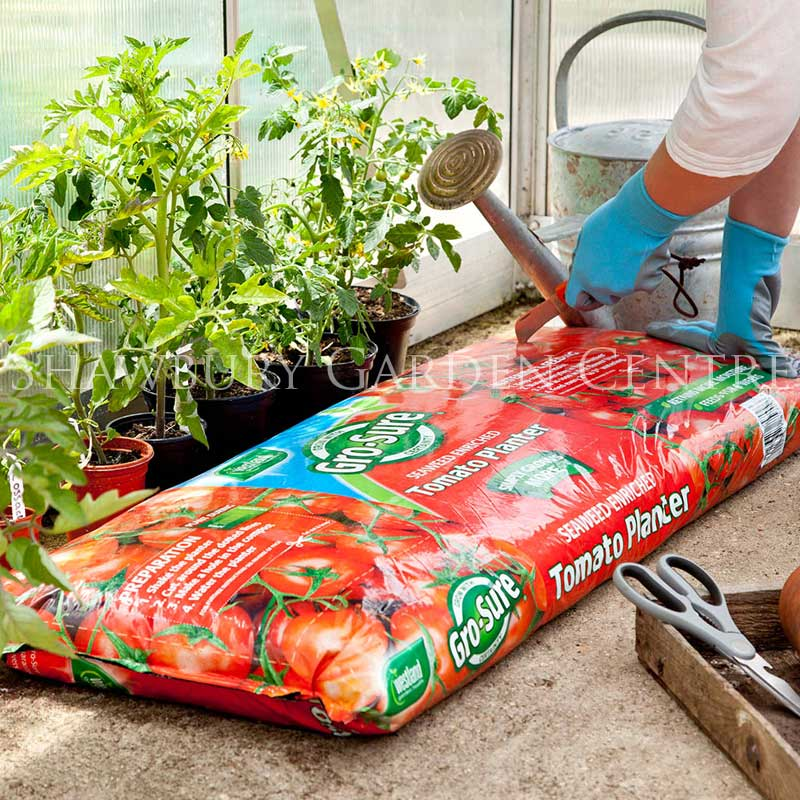 westland gro sure grow bag tomato planter. Black Bedroom Furniture Sets. Home Design Ideas