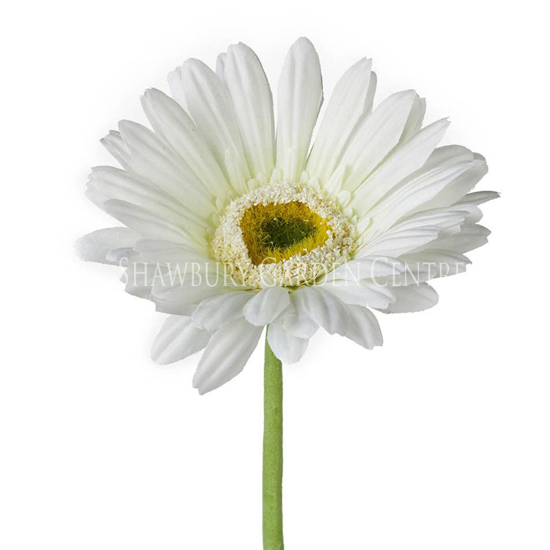 Picture of Parlane Faux Gerbera Single Stem