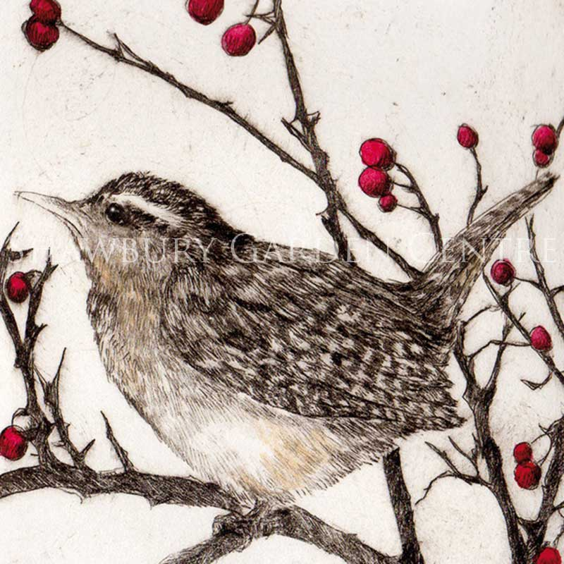 Picture of Green Pebble Wren in Winter by Sarah Bays - Blank Inside Card