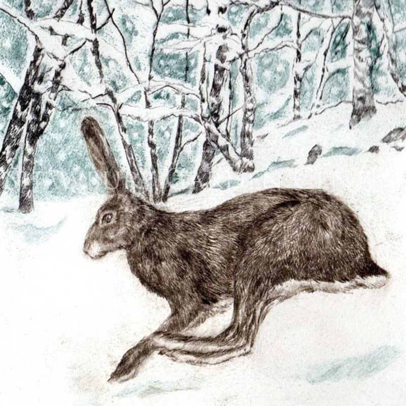Picture of Green Pebble Winter Run by Sarah Bays - Blank Inside Card