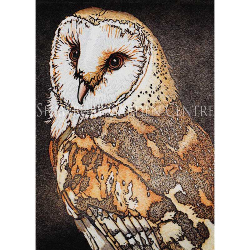 Picture of Green Pebble Barn Owl Card by Mike Smith