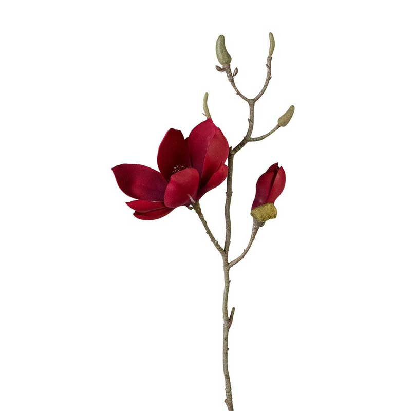 Picture of Parlane Red Magnolia Spray