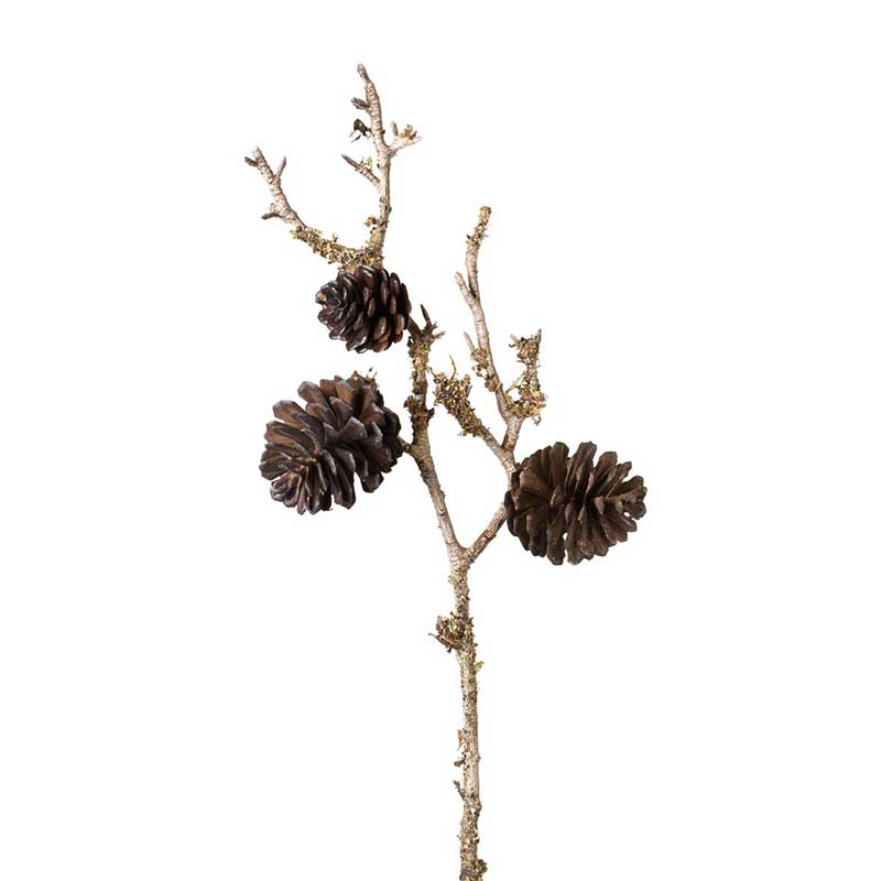 Picture of Parlane Pine Cone Spray