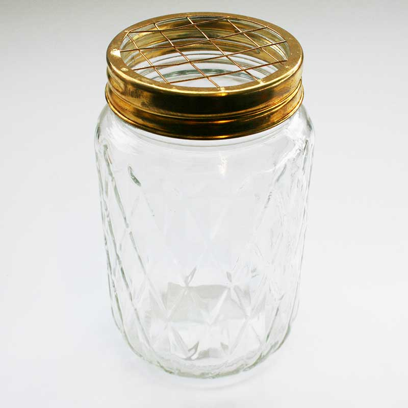Picture of Parlane Jar Vase with Wire Guide Top