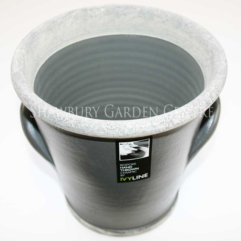 Picture of Ivyline Botanics Planter