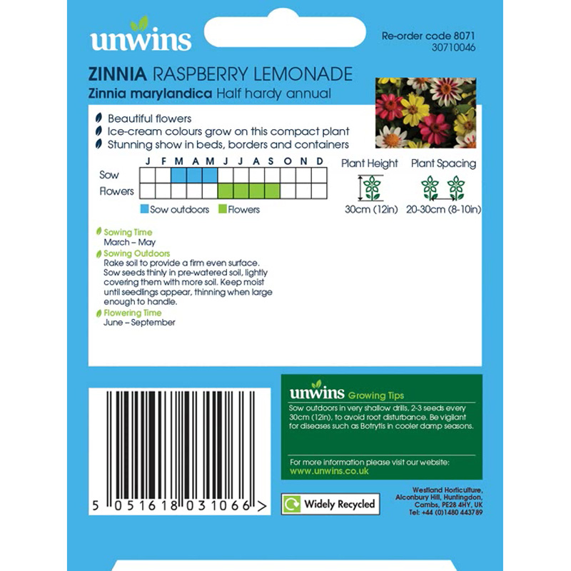 Picture of Unwins 'Raspberry Lemonade' Zinnia Seeds