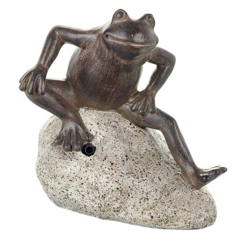 Picture of Parlane Croaking Frog