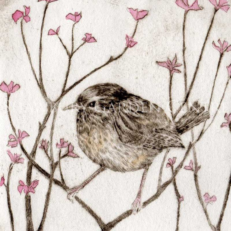 Picture of Amongst The Blossom by Sarah Bays