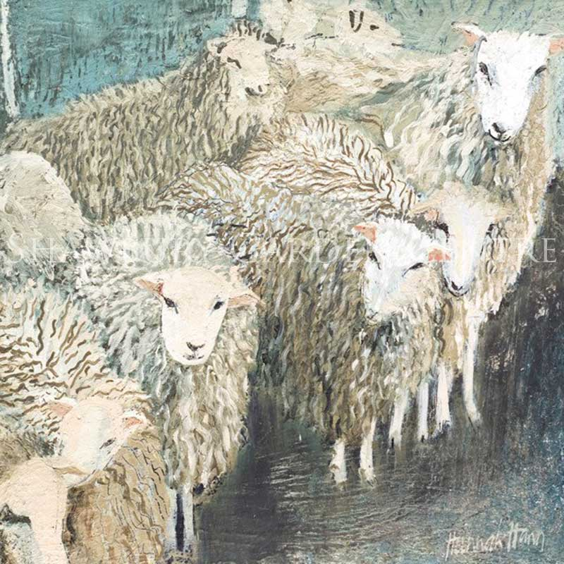 Picture of Green Pebble 'Peter's Sheep' by Hannah Hann Blank Inside Greeting Card