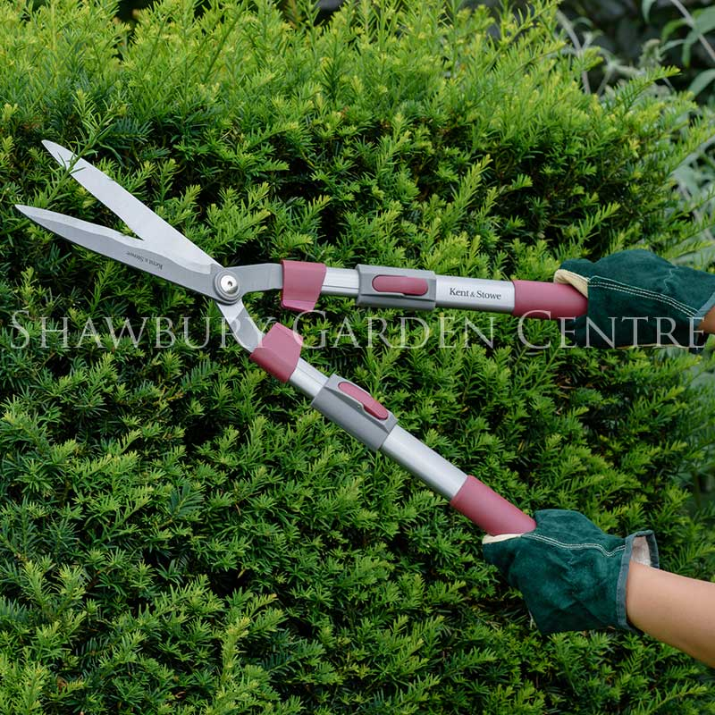 Picture of Kent & Stowe Telescopic Hedge Shears 9''