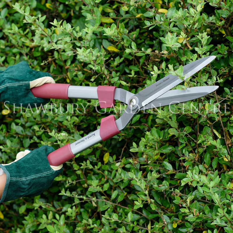 Picture of Kent & Stowe Fixed Handle Hedge Shears