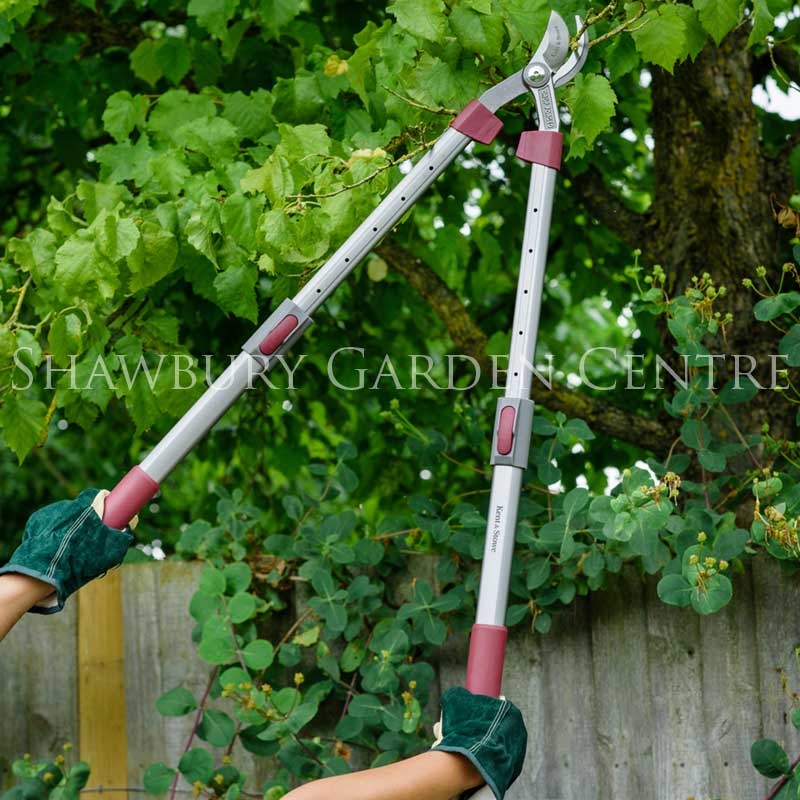 Picture of Kent & Stowe Telescopic Handled Bypass Loppers