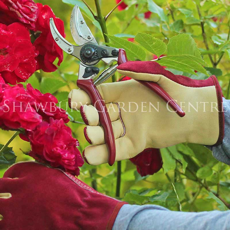 Picture of Kent & Stowe Ladies' Premium Leather & Suede Gloves