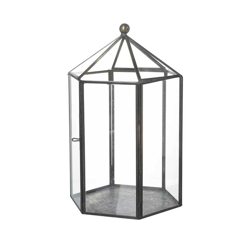 Picture of Parlane 'Bower' Terrarium Style Lantern