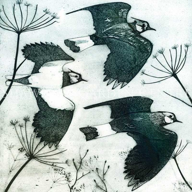 Picture of Green Pebble 'Lapwings' by Kerry Buck