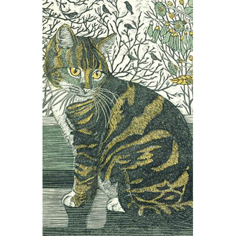Picture of Green Pebble 'Tabitha On The Windowsill' Notecards