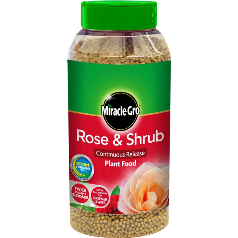 Picture of Miracle-Gro Rose & Shrub (Continuous Release) Plant Food