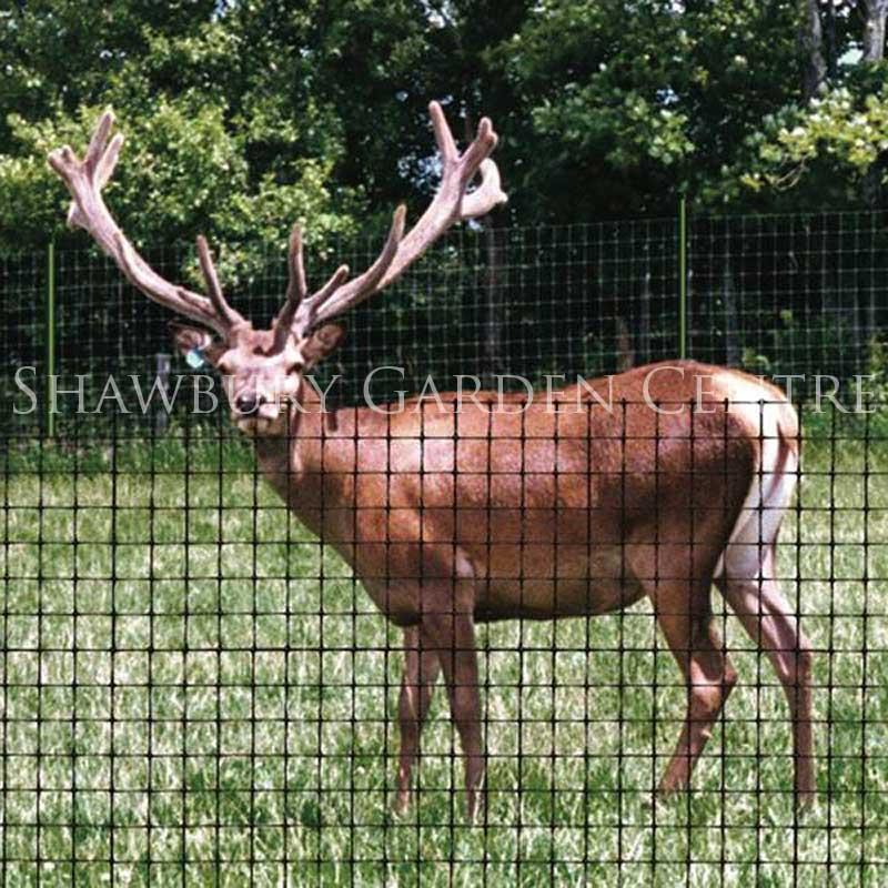 Picture of Deer Fence
