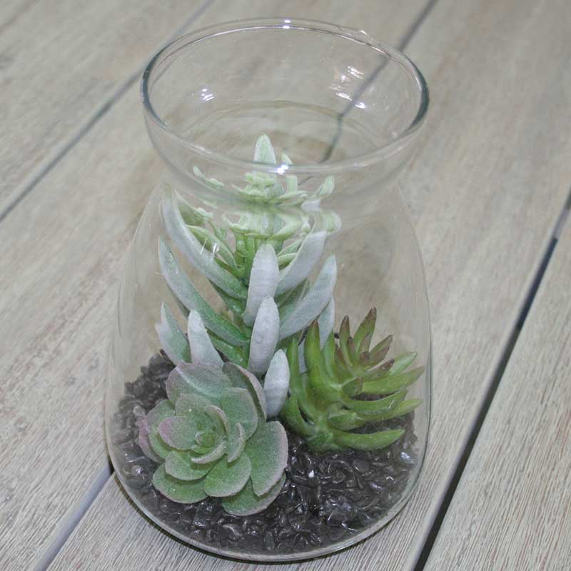 Picture of Gisela Graham Faux Succulent Medley in Glass Vase