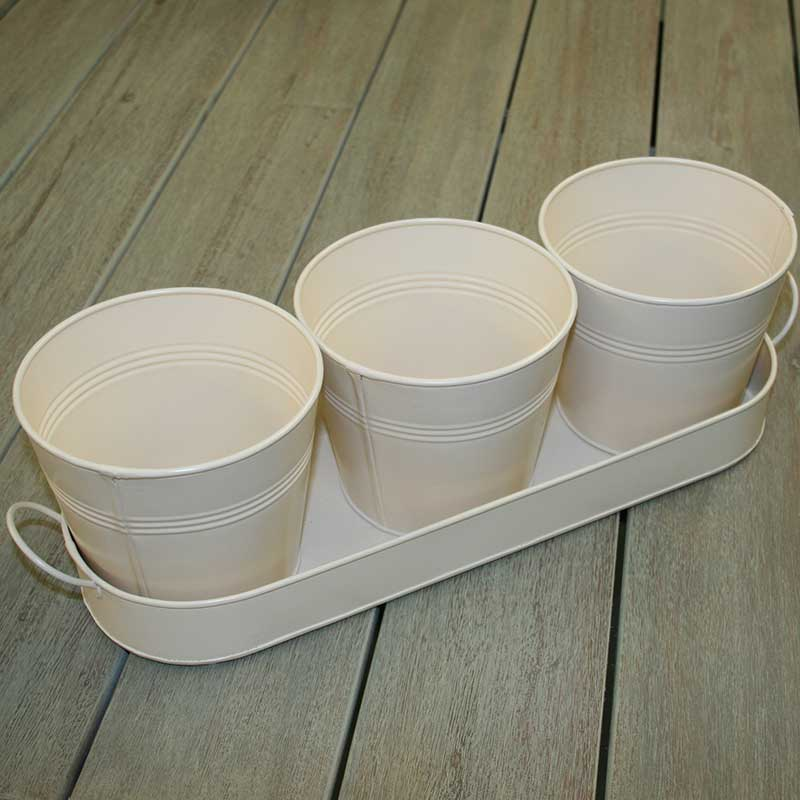 Picture of Ivyline Set of 3 Herb Pots on Tray