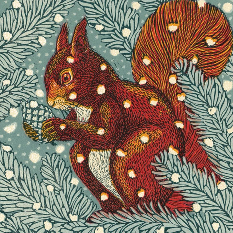 Picture of 'Red Squirrel' by Vanessa Lubach - blank inside card