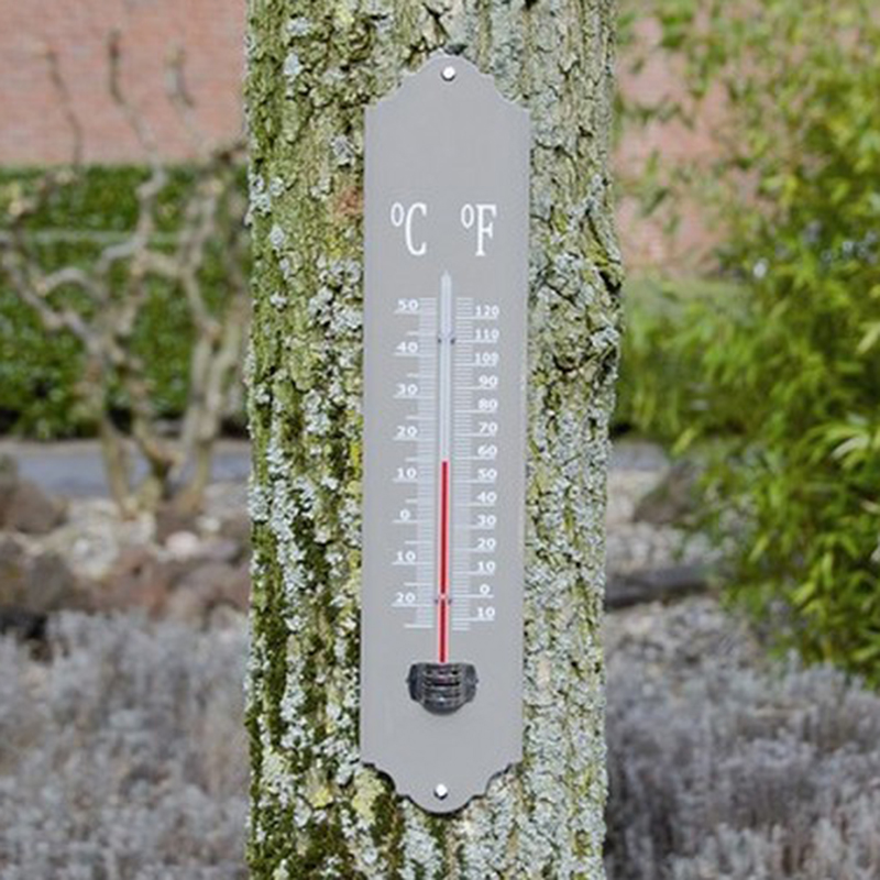 Picture of Fallen Fruits Thermometer