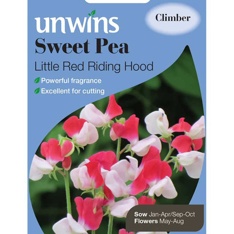 Picture of Unwins Sweet Pea 'Little Red Riding Hood' Seeds