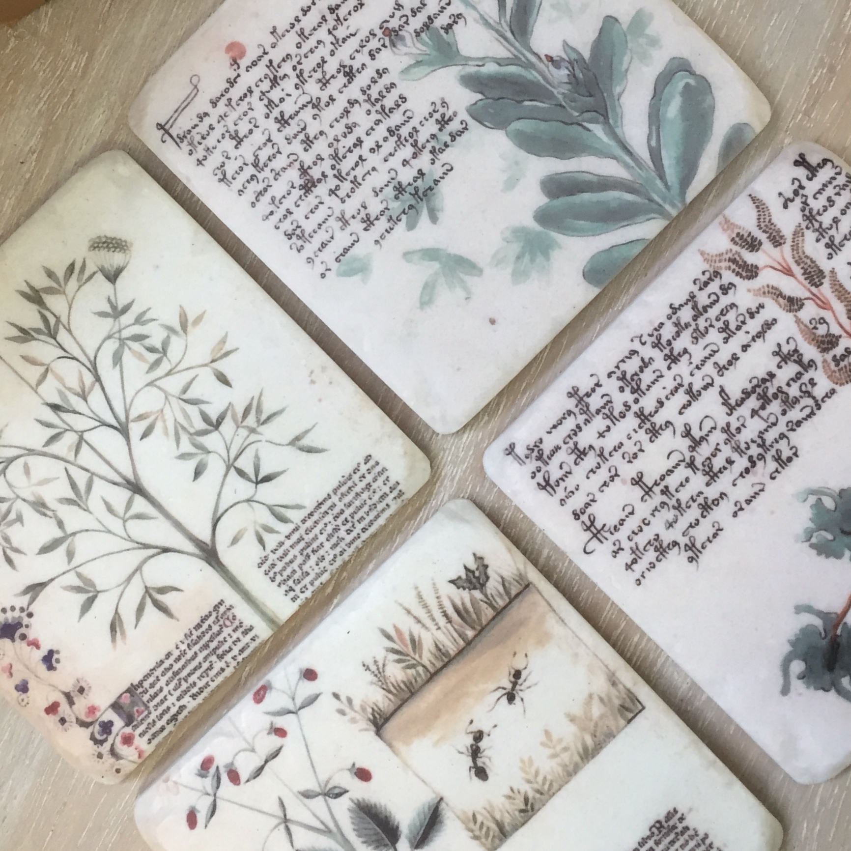 Picture of Gisela Graham Botanical Resin Coasters