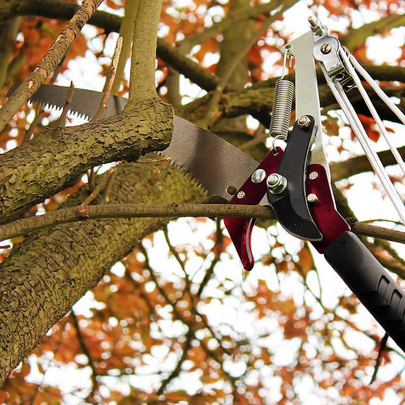 Picture of Kent & Stowe Telescopic Tree Lopper/Pruner 3m