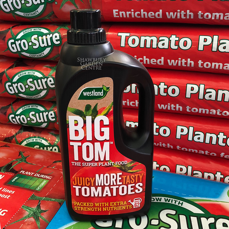 Picture of Westland Big Tom Super Plant Food