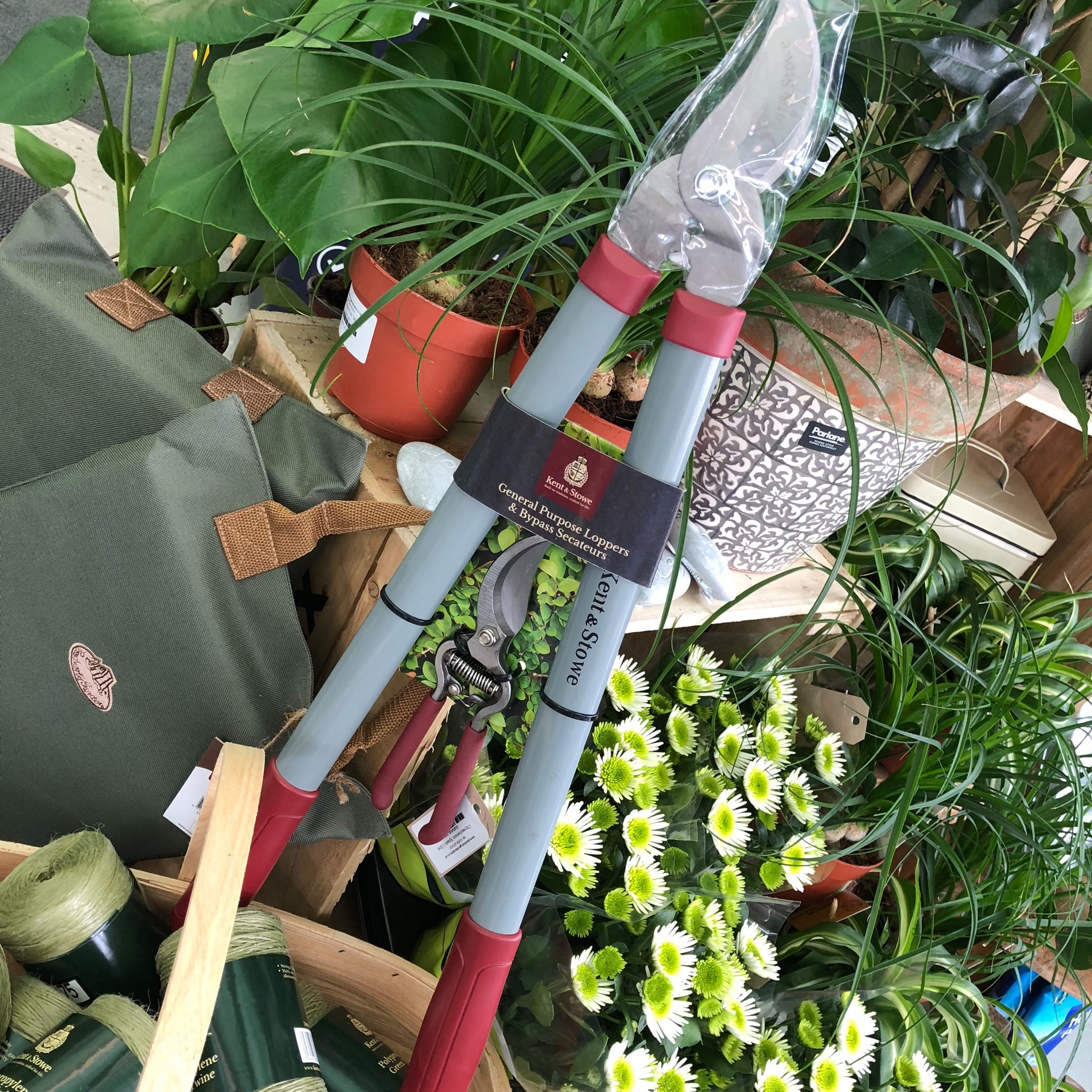 Picture of Kent & Stowe Loppers & Secateurs Set