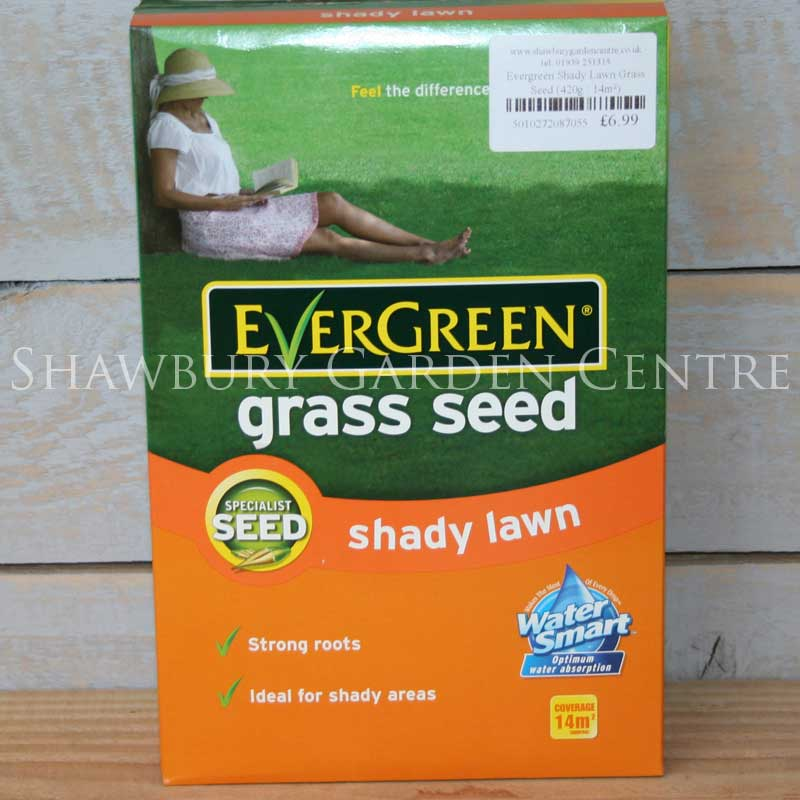 Picture of Scotts Evergreen Shady Lawn Grass Seed