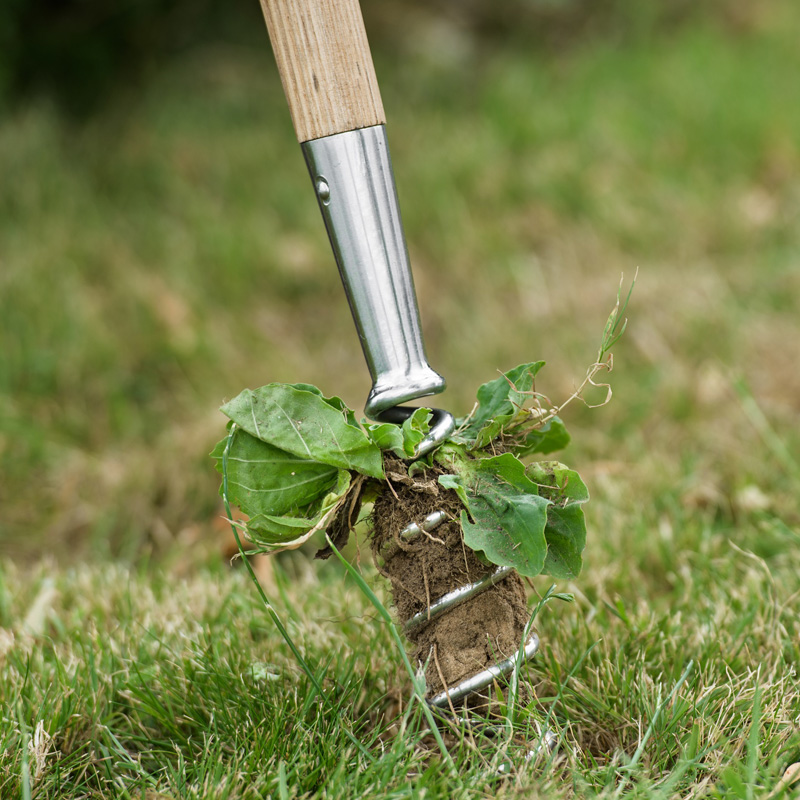Picture of Kent & Stowe Stainless Steel Corkscrew Weeder