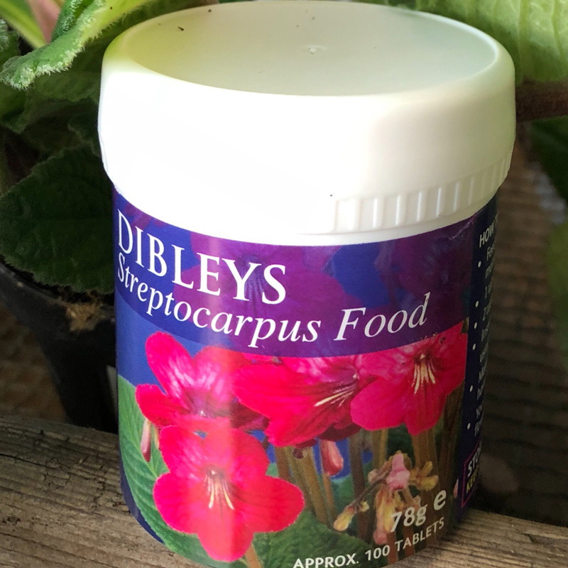 Picture of Dibley's Streptocarpus Food