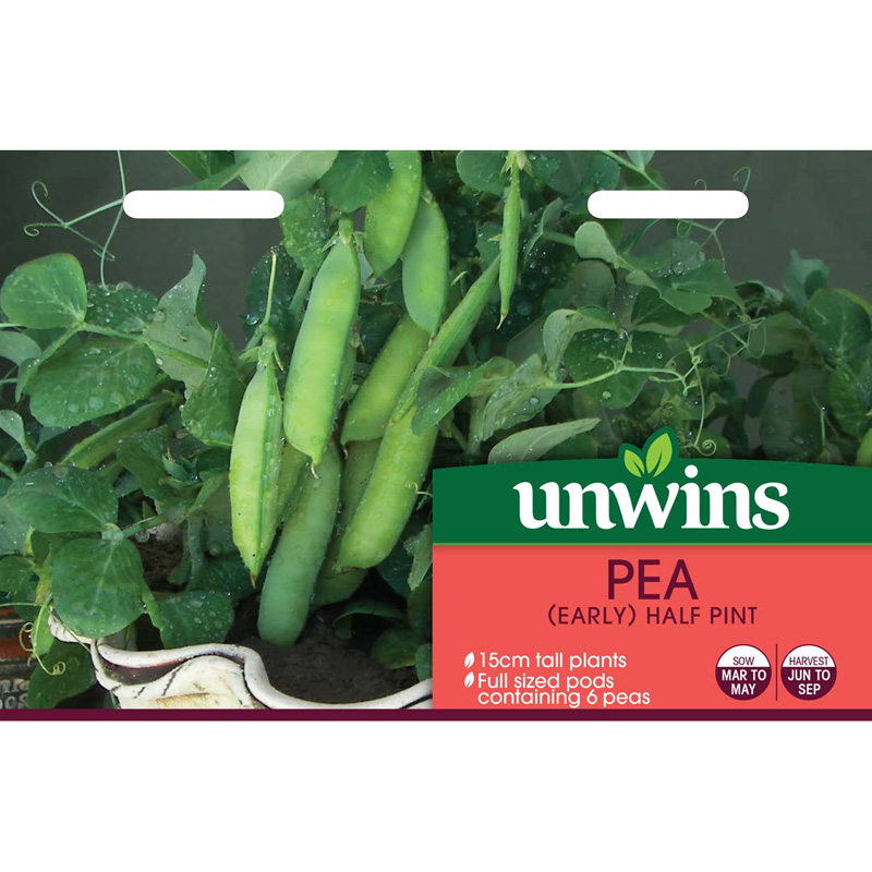 Picture of Pea 'half pint' seeds