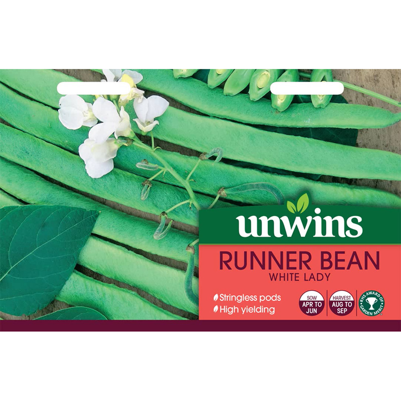 Picture of Unwins 'White lady' runner bean seeds